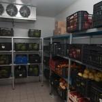 camaras-frigorificas-para-fruteria