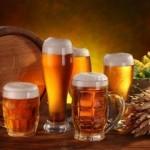 proyecto para fabrica de cerveza