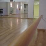 proyecto-escuela-de-danza